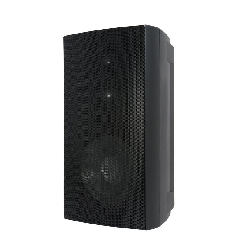 Speakercraft OE6 DT One BLK