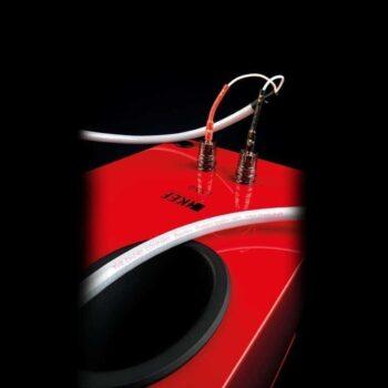 Chord-Company-Shawline